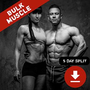 Bulk Muscle 5 Day Split